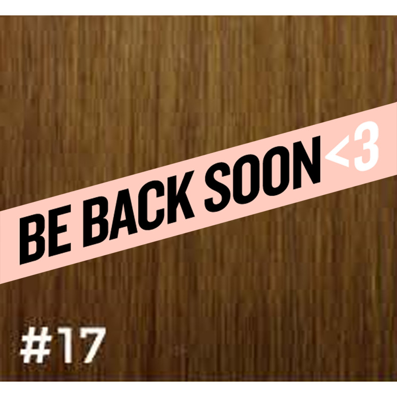 gbb clip-in hair extensions #17 14
