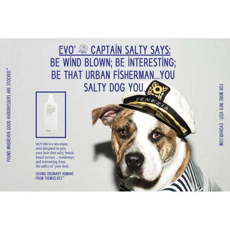 evo salty dog poster