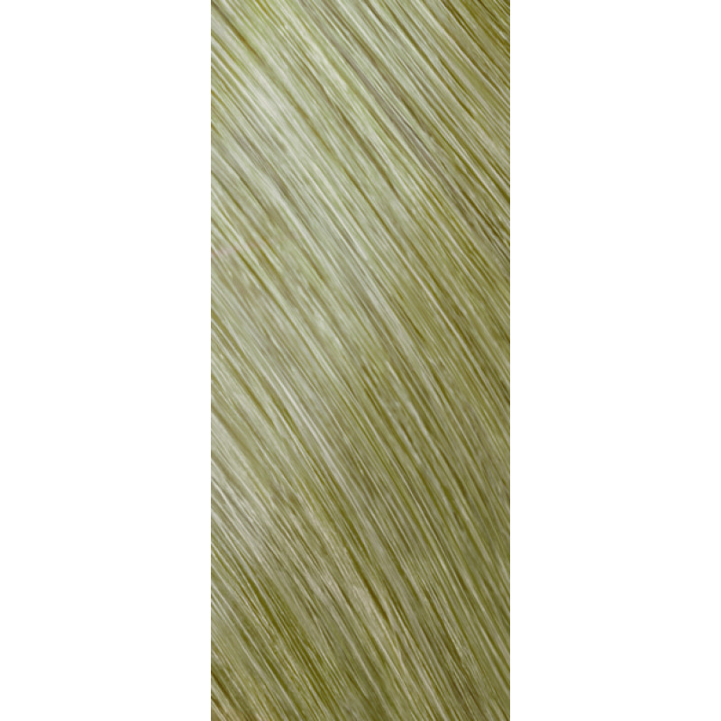 colorance 10bs beige silv..