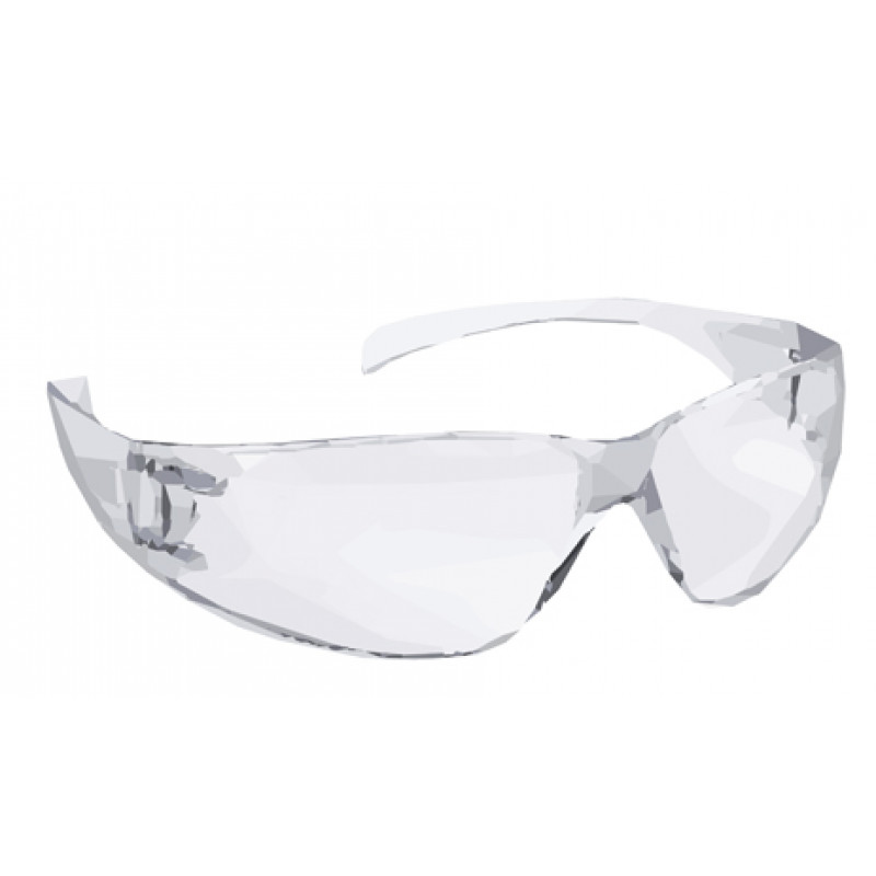 safety glasses clear 1 pi..