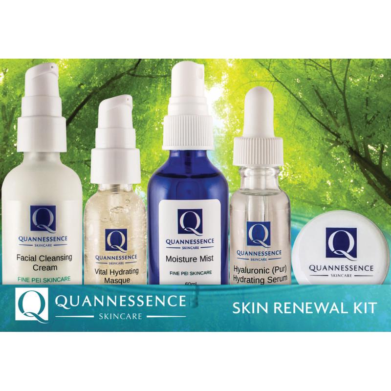 quannessence skin renewal skincare kit
